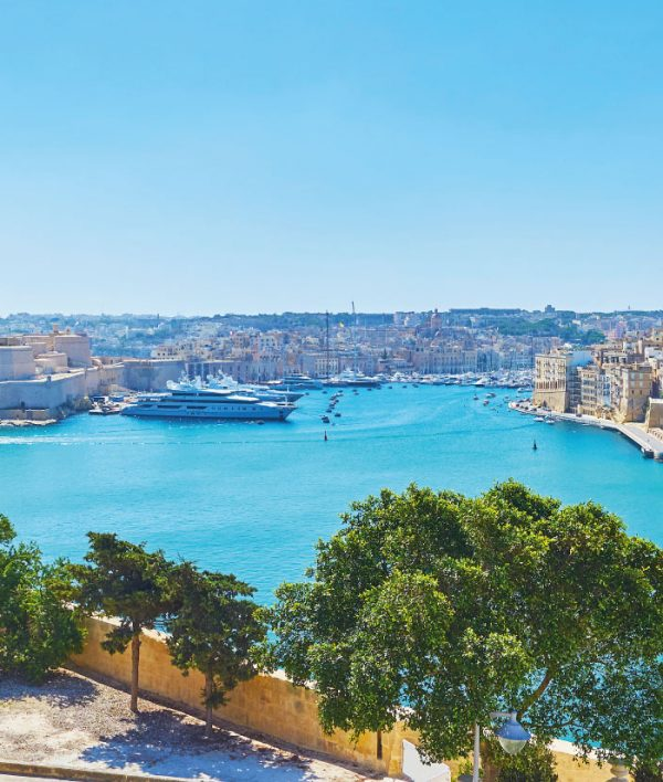 Malta in 2020 and beyond